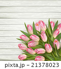 背景 お花 フラワーのイラスト 21378023