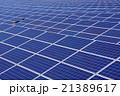 太陽光発電(メガソーラー発電) 21389617