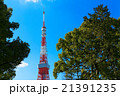 東京タワー タワー 青空の写真 21391235