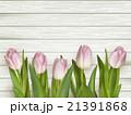背景 お花 フラワーのイラスト 21391868