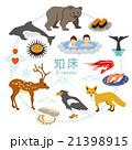 知床 観光 アイコンセット 21398915