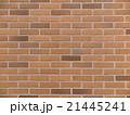 タイルの壁 21445241