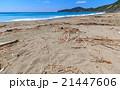 ビーチ 21447606