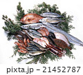鮮魚 魚 魚類の写真 21452787