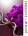 香水瓶と胡蝶蘭 21456841