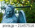 高尾山の天狗(東京都の風景) 21457516