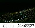 千枚田 あぜのきらめき 21465527