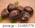 椎茸 生椎茸 冬茹の写真 21465776