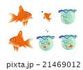 金魚のイラスト 21469012