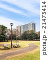 公園 桜 春の写真 21473414