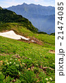 北アルプス 槍ヶ岳 秩父平の写真 21474085