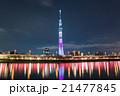 東京スカイツリー 隅田公園 隅田公園桜祭りの写真 21477845