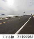 Ocean Road 21499568
