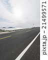 Ocean Road 21499571