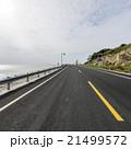 Ocean Road 21499572