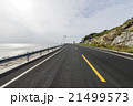 Ocean Road 21499573