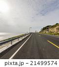 Ocean Road 21499574