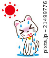 大汗 白猫 21499776