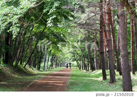 浄土ヶ浜 遊歩道 21502010