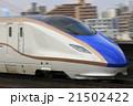 流し撮り 北陸新幹線 新幹線の写真 21502422