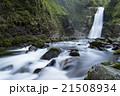 秋保大滝 滝 名取川の写真 21508934