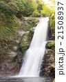 秋保大滝 滝 二口峡谷の写真 21508937