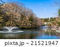 東京 井の頭公園 21521947