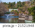東京 井の頭公園 弁財天 21521948