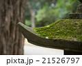 苔のはえた灯籠 21526797