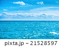空 海 ブルーの写真 21528597