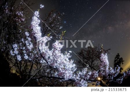 桜と天の川 21533675