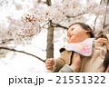桜 赤ちゃん 人物の写真 21551322