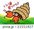 海の生物・ヤドカリ 21551927