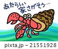 海の生物・ヤドカリ 21551928