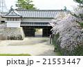 佐賀城 佐嘉城 鯱の門の写真 21553447