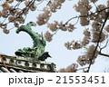 佐賀城 佐嘉城 鯱の門の写真 21553451
