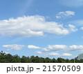 春の青空に白い雲 21570509