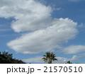 春の青空に白い雲 21570510