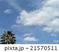 春の青空に白い雲 21570511