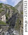 ナショナルパーク 国立公園 阿蘇くじゅう国立公園の写真 21573523