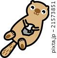 動物 海 ラッコ キャラクター 21573851