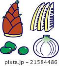 春野菜・筍・そら豆・新玉ねぎ 21584486