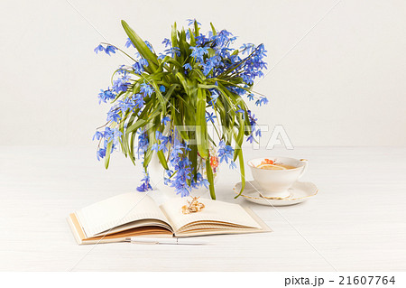 Tea with  lemon and bouquet of  blue primroses onの写真素材 [21607764] - PIXTA