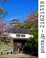 和歌山城 桜 岡口門の写真 21621559