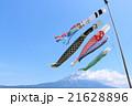 青空の鯉のぼりと富士山 21628896