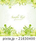 緑 背景 21630400