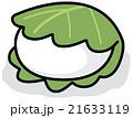 柏餅 和菓子 端午の節句のイラスト 21633119