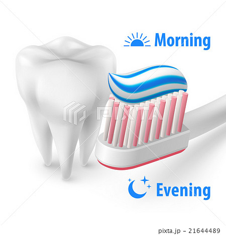 Brushing Teeth Morning and Eveningのイラスト素材 [21644489] - PIXTA