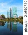 旧芝離宮恩賜庭園 日本庭園 回遊式泉水庭園の写真 21650720