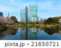 旧芝離宮恩賜庭園 日本庭園 回遊式泉水庭園の写真 21650721
